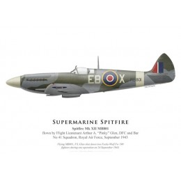 "Spitfire Mk XII, F/L Arthur ""Pinky"" Glen, No 41 Squadron, Royal Air Force, septembre 1943"