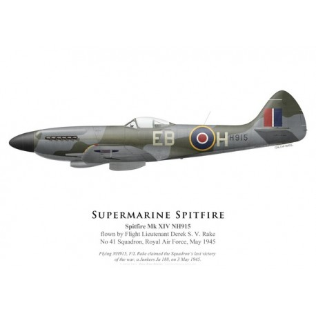 Spitfire Mk XIV NH915, F/L Derek Rake, No 41 Squadron, Royal Air Force, mai 1945