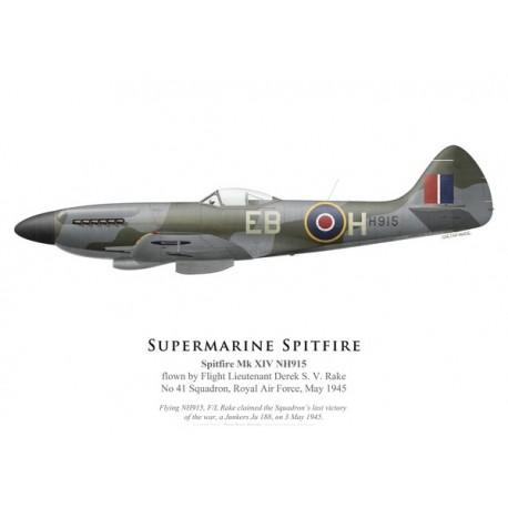 Spitfire Mk XIV NH915, F/L Derek Rake, No 41 Squadron, Royal Air Force, May 1945