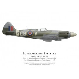 Spitfire Mk XIV RM791, S/L Douglas Benham, No 41 Squadron, Royal Air Force, January 1945 (starboard side)