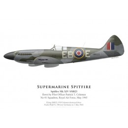 Spitfire Mk XIV SM823, P/O Patrick Coleman, No 41 Squadron, Royal Air Force, May 1945