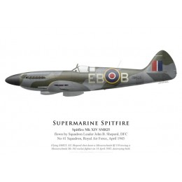 Spitfire Mk XIV SM825, S/L John Sheperd, DFC, No 41 Squadron, Royal Air Force, avril 1945
