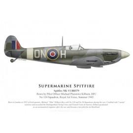 Spitfire Mk VI, P/O Michael Kilburn DFC, No 124 Squadron, Royal Air Force, 1942