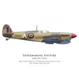 Spitfire Mk VI, High Altitude Flight, No 103 Maintenance Unit, Egypte, 1942