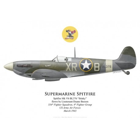 Spitfire Mk Vb, Lt Duane Beeson, 334th Fighter Squadron, 4th Fighter Group, USAAF, 1943