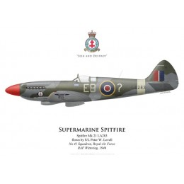 Spitfire Mk 21, S/L Peter W. Lovell, No 41 Squadron, Royal Air Force, 1946