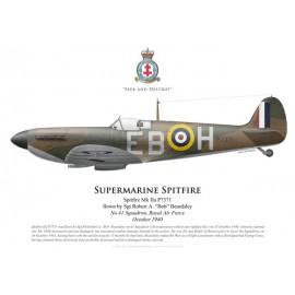 Spitfire Mk IIa, Sgt Robert Beardsley, No 41 Squadron, Royal Air Force, octobre 1940