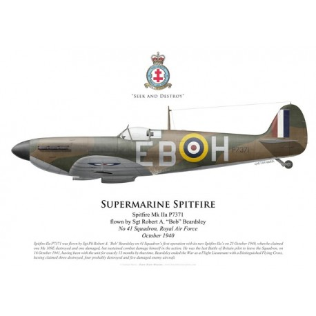 Spitfire Mk IIa, Sgt Robert Beardsley, No 41 Squadron, Royal Air Force, October 1940