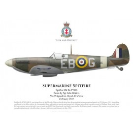 Spitfire Mk IIa, Sgt John Gilders, No 41 Squadron, Royal Air Force, février 1941