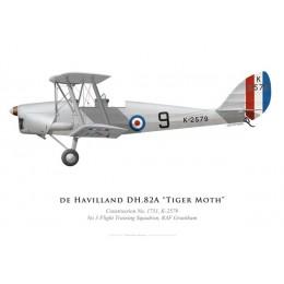 Tiger Moth K2579, Royal Air Force