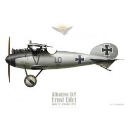 Albatros D.V, Ernst Udet, Jasta 37, automne 1917