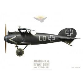 Albatros D.V, Ernst Udet, Jasta 37, Winter 1917