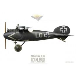 Albatros D.V, Ernst Udet, Jasta 37, hiver 1917