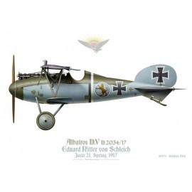 Albatros D.V, Eduard Ritter von Schleich, Jasta 21, printemps 1917