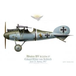 Albatros D.V, Eduard Ritter von Schleich, Jasta 21, Spring 1917