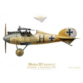 Albatros D.V, Jastachule 1, Valenciennes, France, 1917