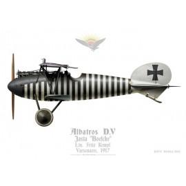 """Albatros D.V, Ltn. Fritz Kempf, Jasta """"Boelcke"""", Belgique, 1917"""