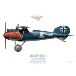 Albatros D.V, Ltn. d. R. Paul Strahle, Harlebecke, novembre 1917