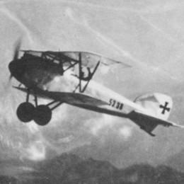 Albatros D.I / D.II / D.III