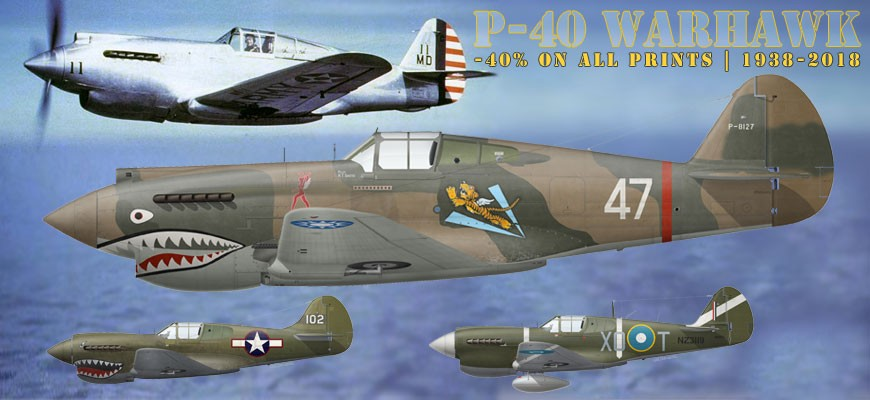 80th anniversary of the first flight of the P-40 Warhawk   -40 % on all P-40 Warhawk prints