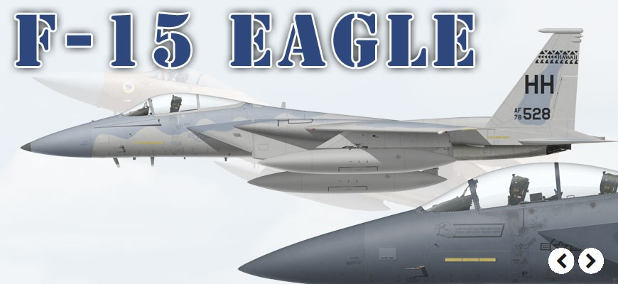 F-15 Eagle & Strike Eagle