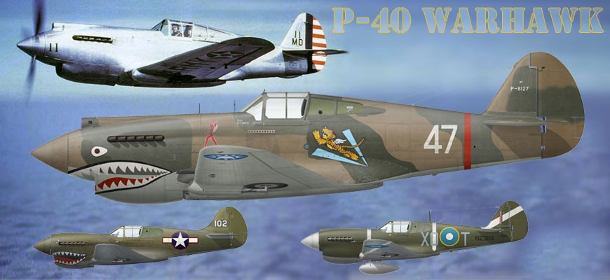 Seel all Curtiss P-40 Warhawk prints